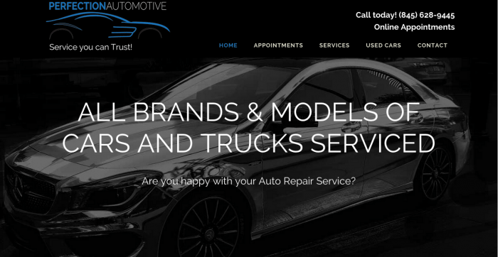 Logo and Website Design for Perfection Automotive