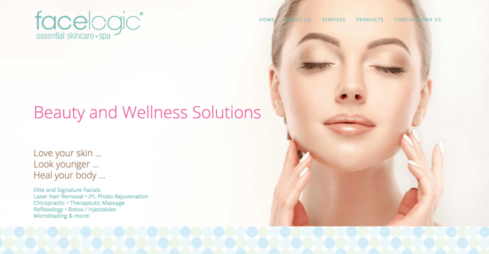 Facelogic website design